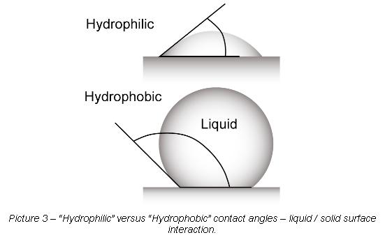 Hydrophilic versus Hydrophobic